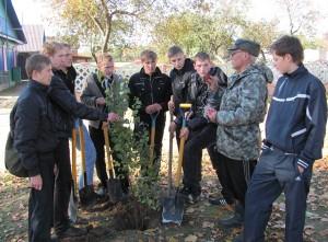 Школьники посадили молодые деревца на аллее 20 лет Великой Победы