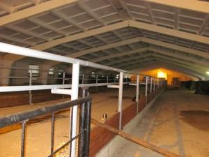 В СП «Выдрея» завершена реконструкция молочно-товарной фермы «Большая Выдрея»