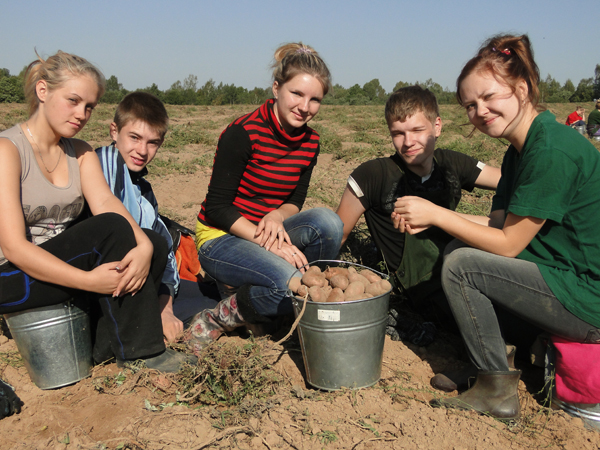 На помощь лиозненским аграриям пришли студенты и учащаяся молодёжь