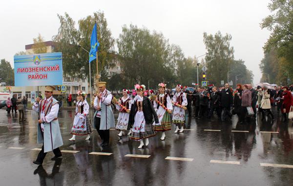 «Дожинки-2014» в Городке (фото)