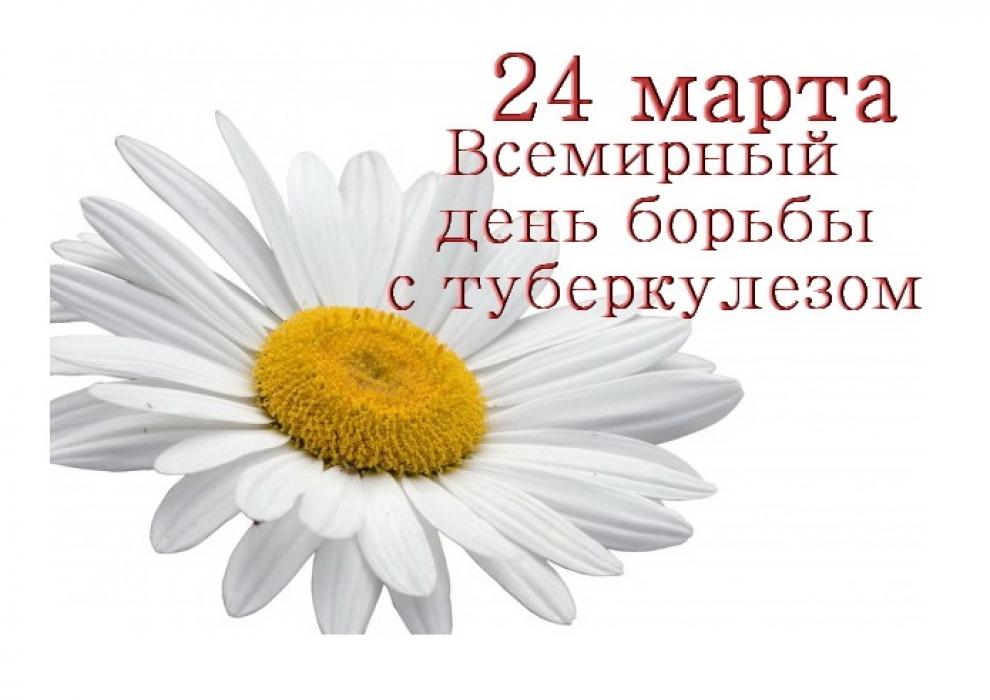 В Витебске проходит акция «Белая ромашка»