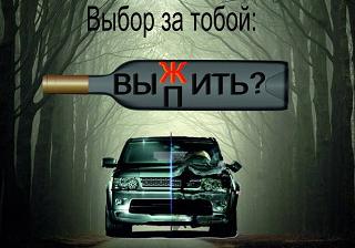 «Останови пьяного водителя!»