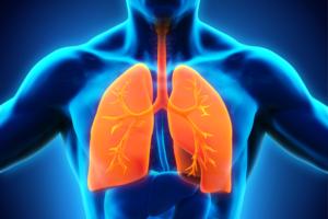 24 марта – всемирный день борьбы с туберкулёзом