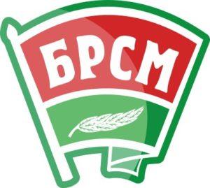 БРСМ в Витебской области запустит серию онлайн-проектов для молодежи