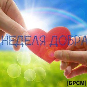 В Лиозненском районе волонтеры БРСМ проведут «Неделю добра»
