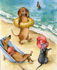 Собакам  на пляже не место