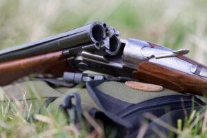 Незаконная разделка самки оленя  в Лиозненском районе:  возбуждено уголовное дело