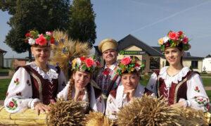 Лучшие аграрии Придвинского края встретятся на «Дожинках-2020»