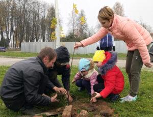 Возле нового дома будет зелёный уголок (ВИДЕО)
