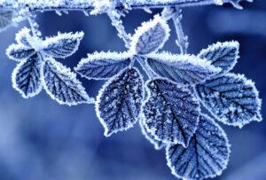 МЧС информирует о значительном понижении температуры воздуха
